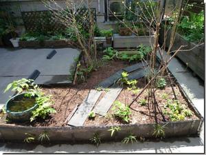 Center_garden_0260