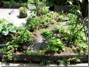 Center_garden_0795